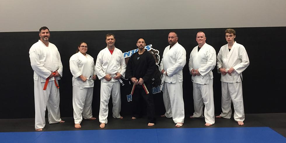 FREE Adult Beginner Karate Workshop!