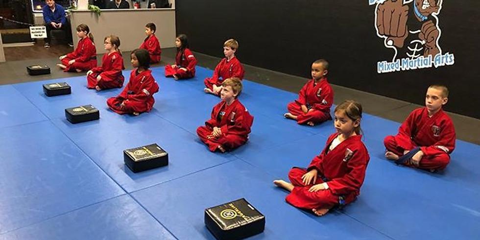 FREE Kids Karate Workshop Apex, NC