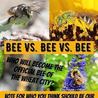 Bee battle.jpg