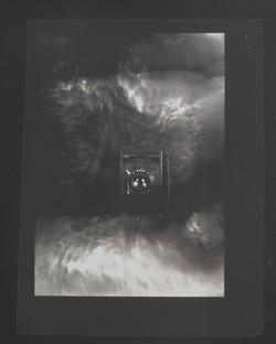 Medium Format Kodak Eastman