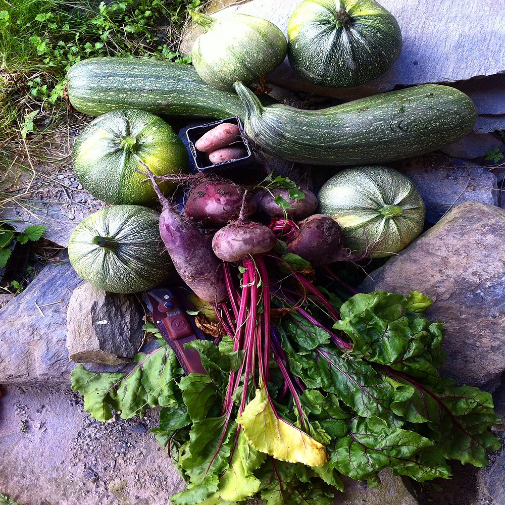 permaculture and organic gardening at our boutique ski accommodation