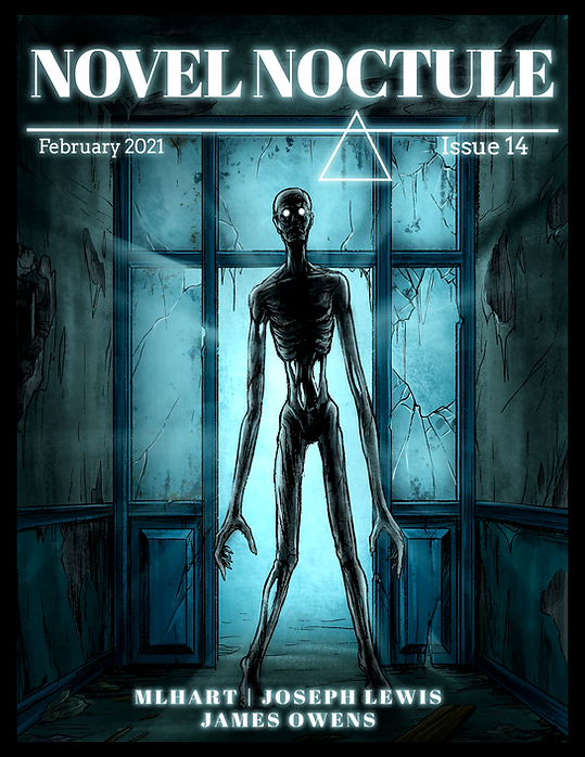NN Cover Issue14.png