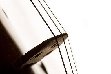 Silhouette of a violin selective focus.j
