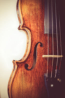 professional violin background close-up