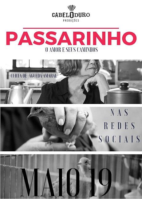 PASSARINHO CARTAZ.jpg