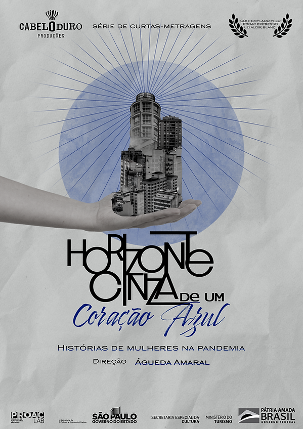 poster horizonte cinza.png
