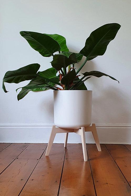 Plant Stand Koru