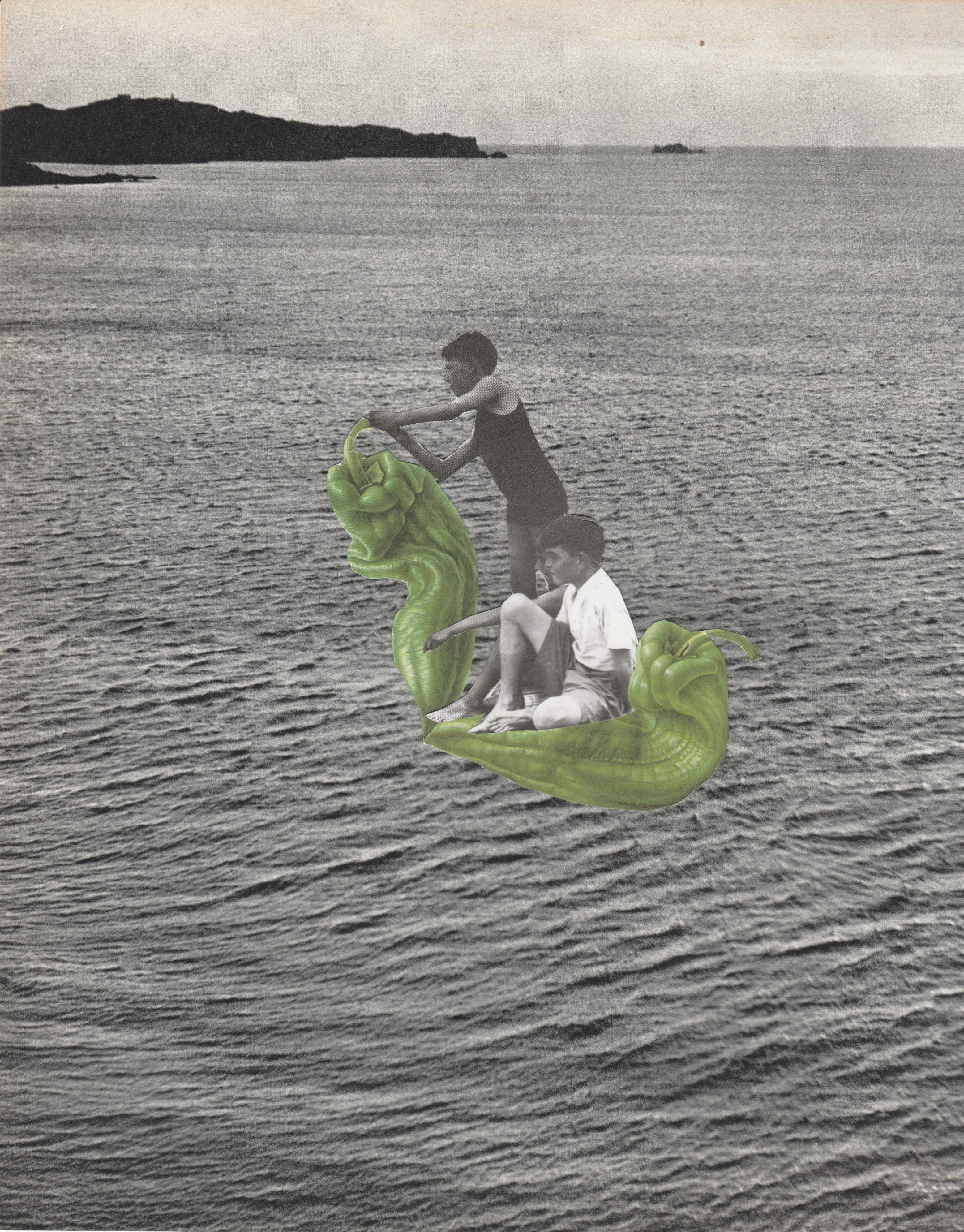 de naturaleza navegante