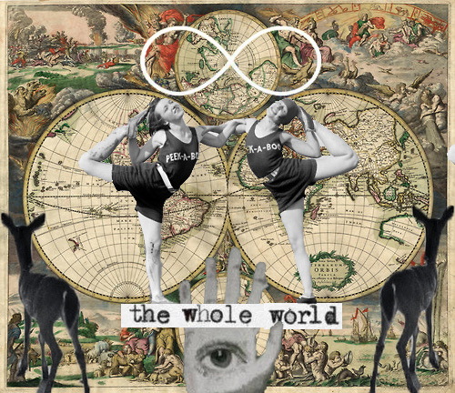 whole wide world