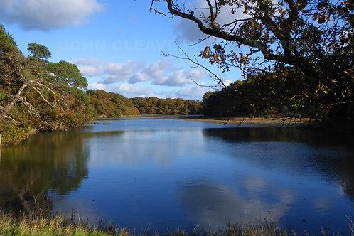 Late Autumn, Hampstead Creek, IW