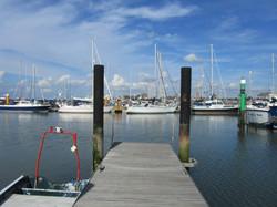 Still Harbour