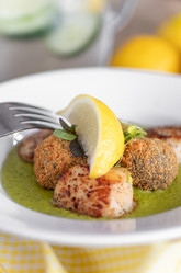 Scallops in green sauce | food photography