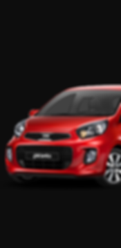 PICANTO.png