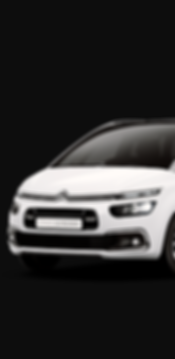 C4 PICASSO.png