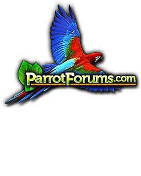 parrot forums logo