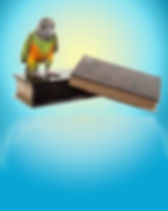 parrotbook_W.jpg