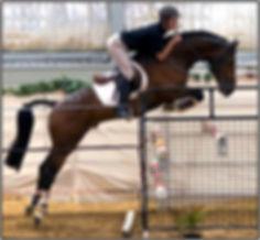 Aspen jumping500.jpg