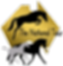 LOGO 2 NT with gold.png