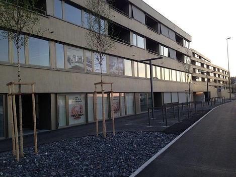 Schulgebäude Ving Tsun Horgen