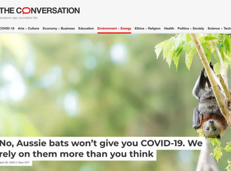 Dr Alison Peel addresses the myths and negative press about bats and COVID-19