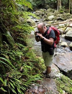 Prof. McCallum taking macro photos