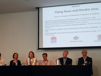 Outcomes of $12M research program presented at the National Hendra virus Research Program (NHeVRP) s
