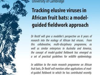 "EFRI Seminar by Dr. Olivier Restif - ""Tracking elusive viruses in African fruit bats: a model-g"