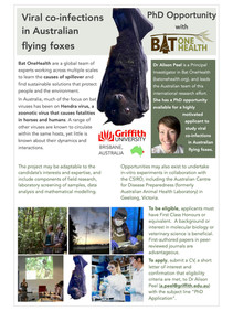 New fully-funded PhD position available: Viral co-infections in Australian flying foxes