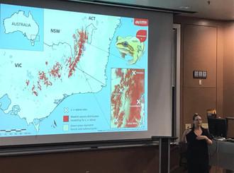 Laura presents her research at the Amphibian Disease Meeting in Phoenix, Arizona
