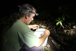 Dr. Dave Newell collecting frog data