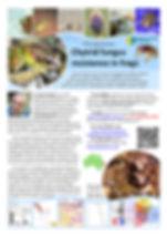 PhD flyer.jpg