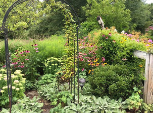 Naturalized Planting