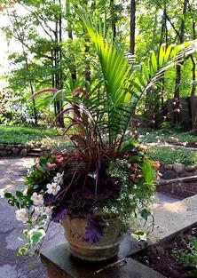 Bodacious Urn Planting!