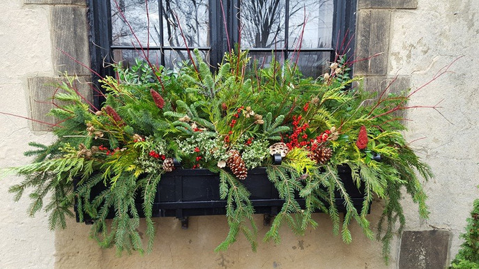 Holiday Flower Box Display