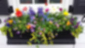 Spring Blooming Flower Box