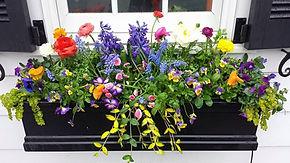Spring Blooming Flower Box