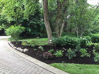 After Garden Renovation