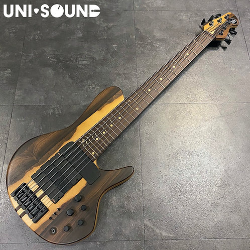 Mattisson Series IV 6 Strings Bass - True Temperament Fret