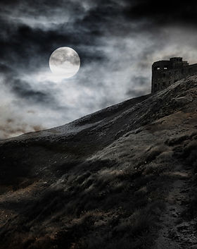 Moonlit Fortress