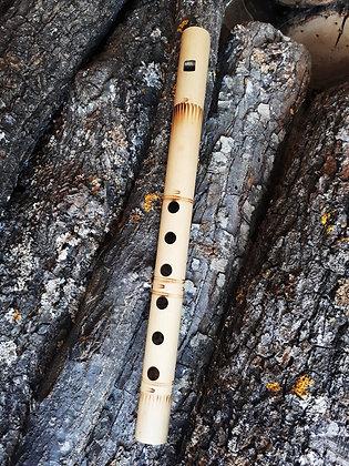 Bambou Flûte