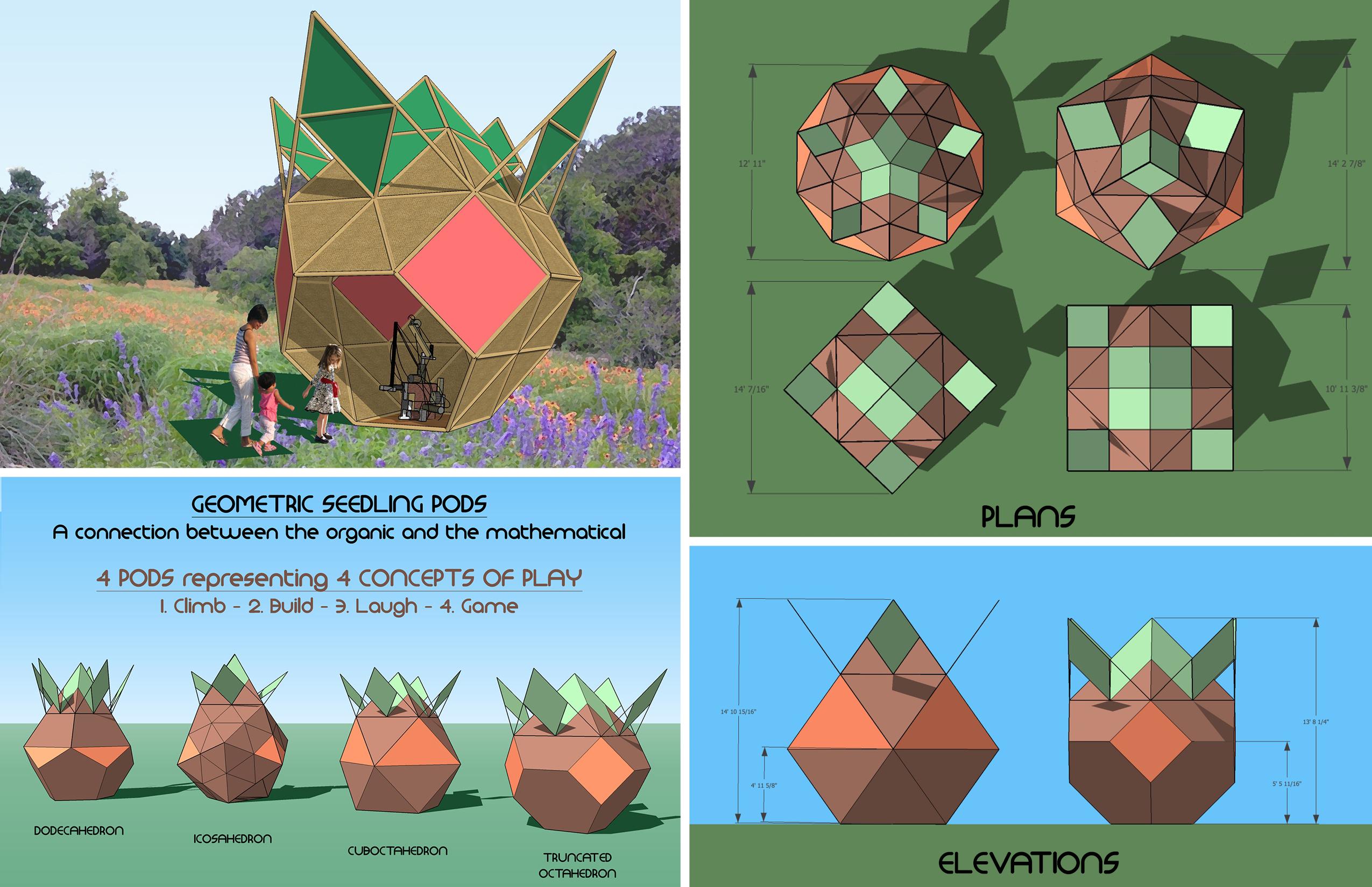 Geometric Seedling Pods3