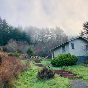 Arcata Cottage & Redwood National Park