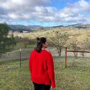 Sequoia's Ranch