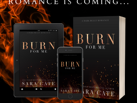 A new dark, bully romance is coming...