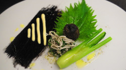 Dover Sole and squid ink