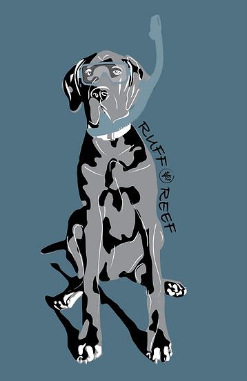 Logo Plus Animation