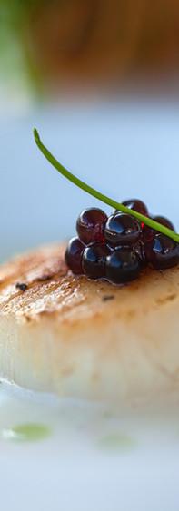 scallop with caviar.jpeg