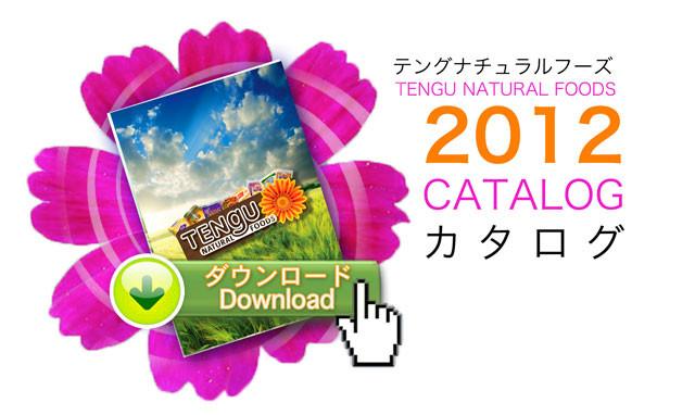 Tengu_catalog_2012_download_640.jpg