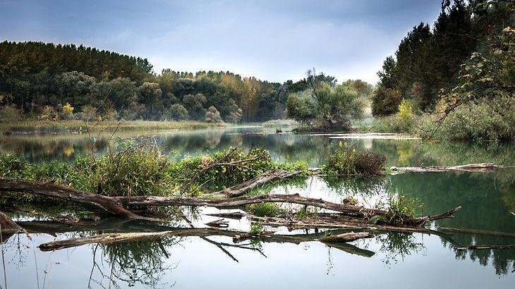 river-977476_1280.jpg