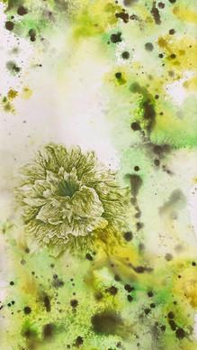 花樣年華 No.7  Flower blossom No.7